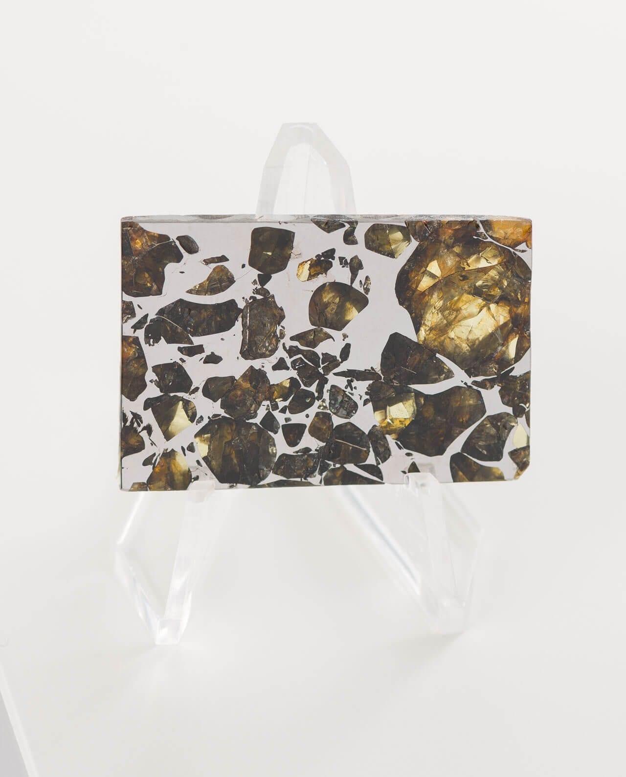 CONLIGHT Seymchan Pallasit Meteorite Iron 2E